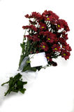 Flowers,bouquet of red flowers with a white card Stock Images