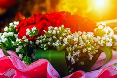 flowers bouquet from red roses stock photos