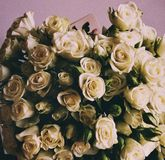 Flowers. Bouquet of roses. White roses Stock Image