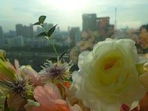 Flowers bouquet in window glass Royalty Free Stock Photo