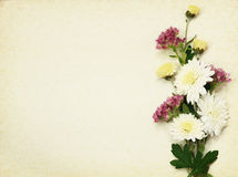 Flowers bouquet on wintage paper Stock Image