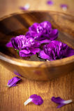 Flowers in a bowl with water for spa Royalty Free Stock Image