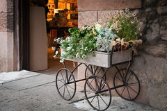 Flowers in box, mounted on iron wheels, staying as decoration of shop entrance Royalty Free Stock Photos