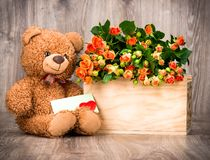 Flowers in the box and a teddy bear Royalty Free Stock Images