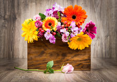 Flowers in the box Royalty Free Stock Photo