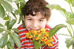 Flowers and boy Royalty Free Stock Images