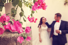Flowers with bride and groom as silhouettes Royalty Free Stock Photography