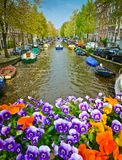 Flowers on a bridge in Amsterdam Stock Image