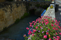 Flowers and bridge to the sun Stock Image