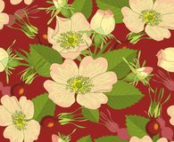 Flowers and brier. Seamless background with flowers and brier on red-brown background Stock Photo