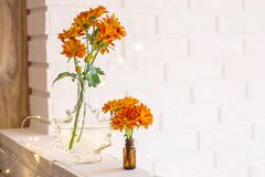 Flowers in the bright home interior. Large and small bouquets of orange chrysanthemums in vases in the autumn bright home interior. Comfort and beauty at home stock photos