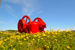 The bright red engine among the flowers Royalty Free Stock Photography