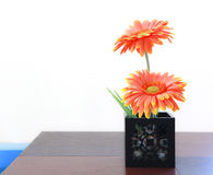 Flowers are brightly on wooden table.  stock photography