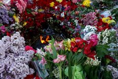 Flowers brought by people to the burning `Eternal Fire` on Victory Day over fascism, May 9 stock photos