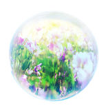 Flowers in bubble Stock Photos