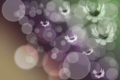 Flowers and Bubbles Background. Floating flowers and bubbles over pale color background Stock Photos
