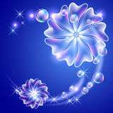Flowers and bubbles Royalty Free Stock Photography