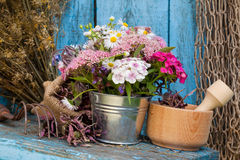 Flowers in bucket and mortar with healing herbs Stock Photos