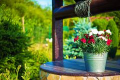 Flowers Bucket on a Well Royalty Free Stock Photos