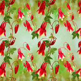 Flowers, buds and leaves - drawing by watercolor. Aquilegia.Watercolor background. Abstract wallpaper with floral motifs.  Seamles Royalty Free Stock Photos