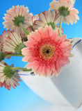 Flowers Bunch. Colorful flowers bunch. Bouguet. Romantic image Stock Photography