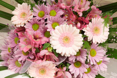 Flowers bunch Stock Photos