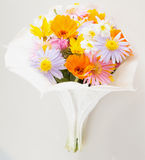 Flowers bunch Royalty Free Stock Images