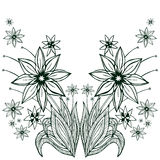 Flowers buqet  on white background. Hand-drawn vector illustration. On a white background Stock Image