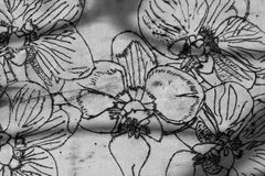 The flowers burned into the wood. The background wood is cut. Black pattern on a white background. Royalty Free Stock Images