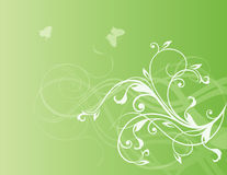 Flowers and butterflies. Elegant flowers and butterflies on green gradient background Royalty Free Stock Images