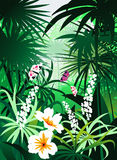 Flowers and butterflies. In the dense reeds bloom exquisite tropical flowers and Stock Photo
