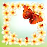Flowers and butterflies. Environmental framed floral background with butterflies and lady bug royalty free illustration