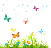 Flowers  and butterflies background  -graphics  Stock Image