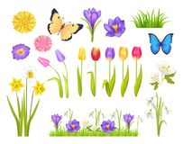 Flowers and Butterflies Set Vector Illustration. Flowers and butterflies collection, floral elements and decoration, grass and plants, spring time, vector Stock Photo