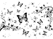 Flowers and Butterflies. Stock Photo