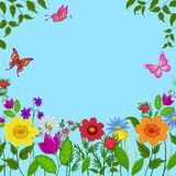 Flowers, butterflies and sky Royalty Free Stock Image