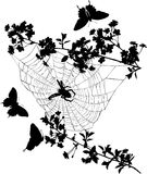 Flowers, butterflies and spider Stock Image