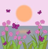 Flowers and Butterflies   in the Sunrise Stock Image