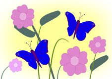 Flowers and Butterflies Stock Image