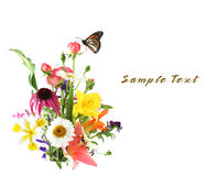 Flowers and butterfly Royalty Free Stock Images
