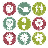 Flowers buttons. Over white background vector illustration Stock Photography