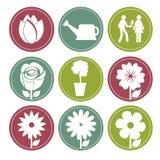 Flowers buttons. Over white background vector illustration vector illustration