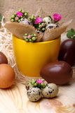 Flowers Calandiva and quail eggs. Chocolate eggs and quail eggs with flowers Calandiva on a plane fir-wood Royalty Free Stock Images