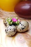 Flowers Calandiva and quail eggs. Chocolate eggs and quail eggs with flowers Calandiva on a plane fir-wood Royalty Free Stock Photography