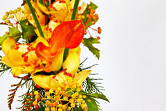Flowers with Calla Royalty Free Stock Image