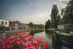 Flowers and canal in Gouda, Netherlands royalty free stock photo