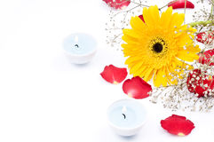 Flowers and candles. Taken in a studio environment, flowers, rose petals and candles Stock Images