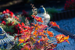 Flowers and candles in cemetery. In sunset Royalty Free Stock Photography