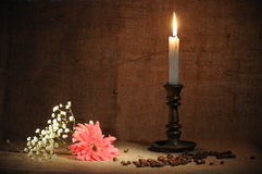 Flowers and candles which burns brightly Stock Photo