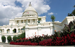 Flowers at the Capitol. Flowers help frame the U.S. Capitol building in Washington, D.C royalty free stock images